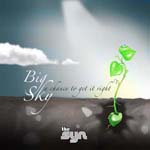 Big Sky - The Syn